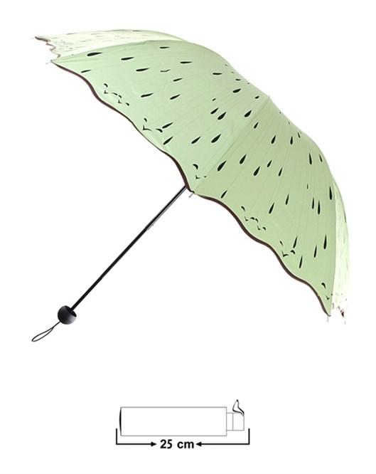 Şemsiye 22003