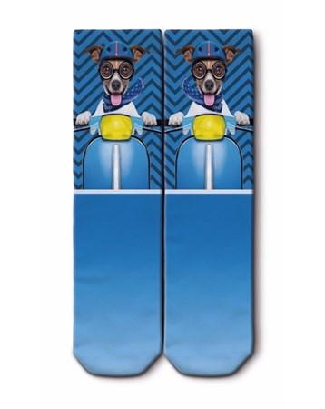 Soket Çorap 01116