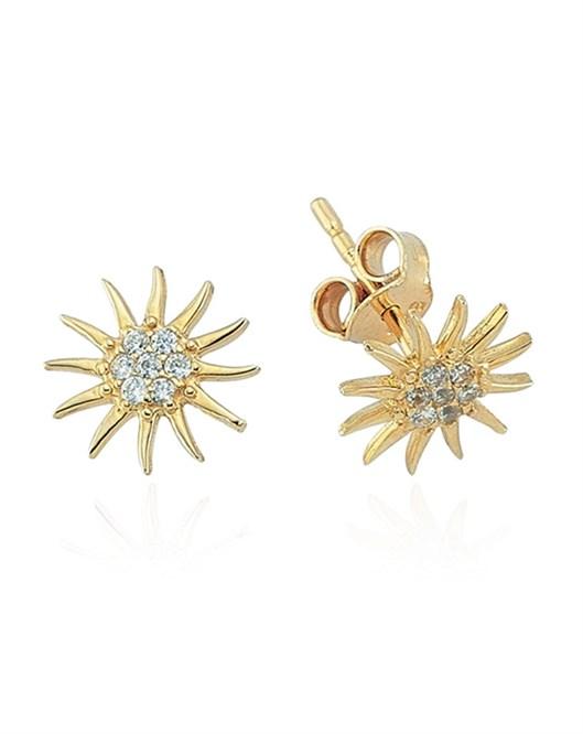 Glorria Jewellery Küpe CM0183