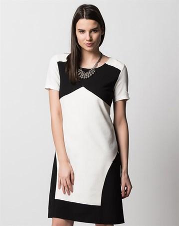 Siyah Beyaz Elbise 73080