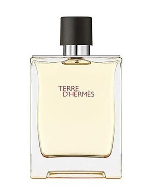 HermesTerre D Hermes Edp Erkek Parfüm